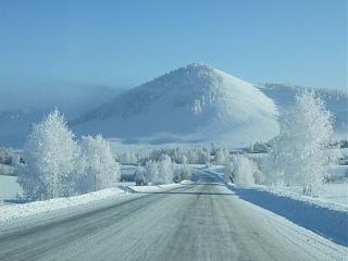 Выбор зимней резины-full1324506686.jpg