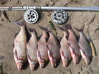 Рыбалка-p1040397.jpg