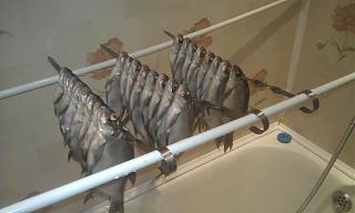 Рыбалка-imag0021.jpg