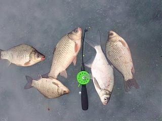 Рыбалка-foto0383.jpg