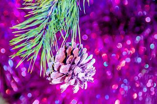 С Новым годом!-dcd043cs-960.jpg