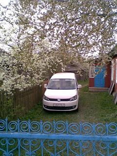 Два беляша - пара (maxi/Trendline/CLCA/2012)-foto022-1.jpg