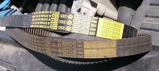 Замена ремня ГРМ и помпы.-belt2compr.jpg