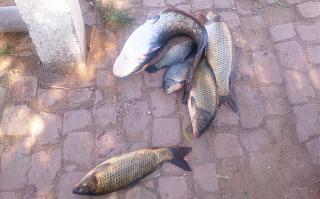 Рыбалка-dsc_0787.jpg