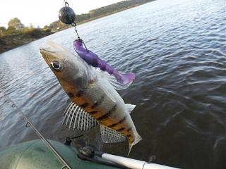 Рыбалка-sam_5625.jpg