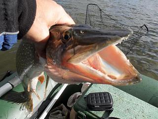 Рыбалка-sam_5636.jpg