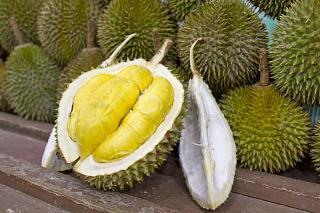 Флудилка-durian1.jpg