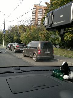 Охота на Caddy.-2012-09-14-733.jpg
